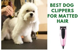 Best-Dog-Clippers-For-Matted-Hair