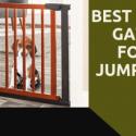 dog gate for jumper dog